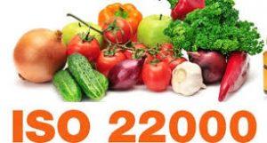 DỊCH VỤ CHỨNG NHẬN ISO 22000 - HACCP 091 979 1169