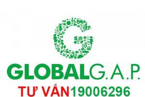 Dịch vụ chứng nhận globalgap