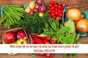 Điều kiện để cơ sở đạt vệ sinh an toàn thực phẩm là gì?