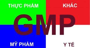 Dịch vụ chứng nhận GMP cho thực phẩm BVSK, mỹ phẩm, thiết bị y tế