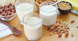 Công bố sản phẩm sữa hạt